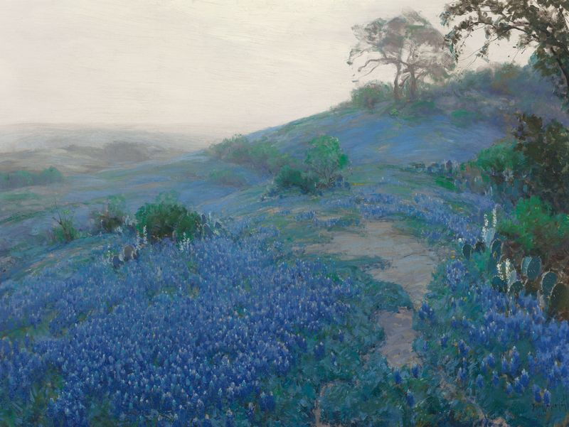 Julian_Onderdonk_-_Blue_Bonnet_Field,_Early_Morning,_San_Antonio_Texas_(1914)